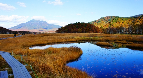 Ozegahara Marshland yang keren